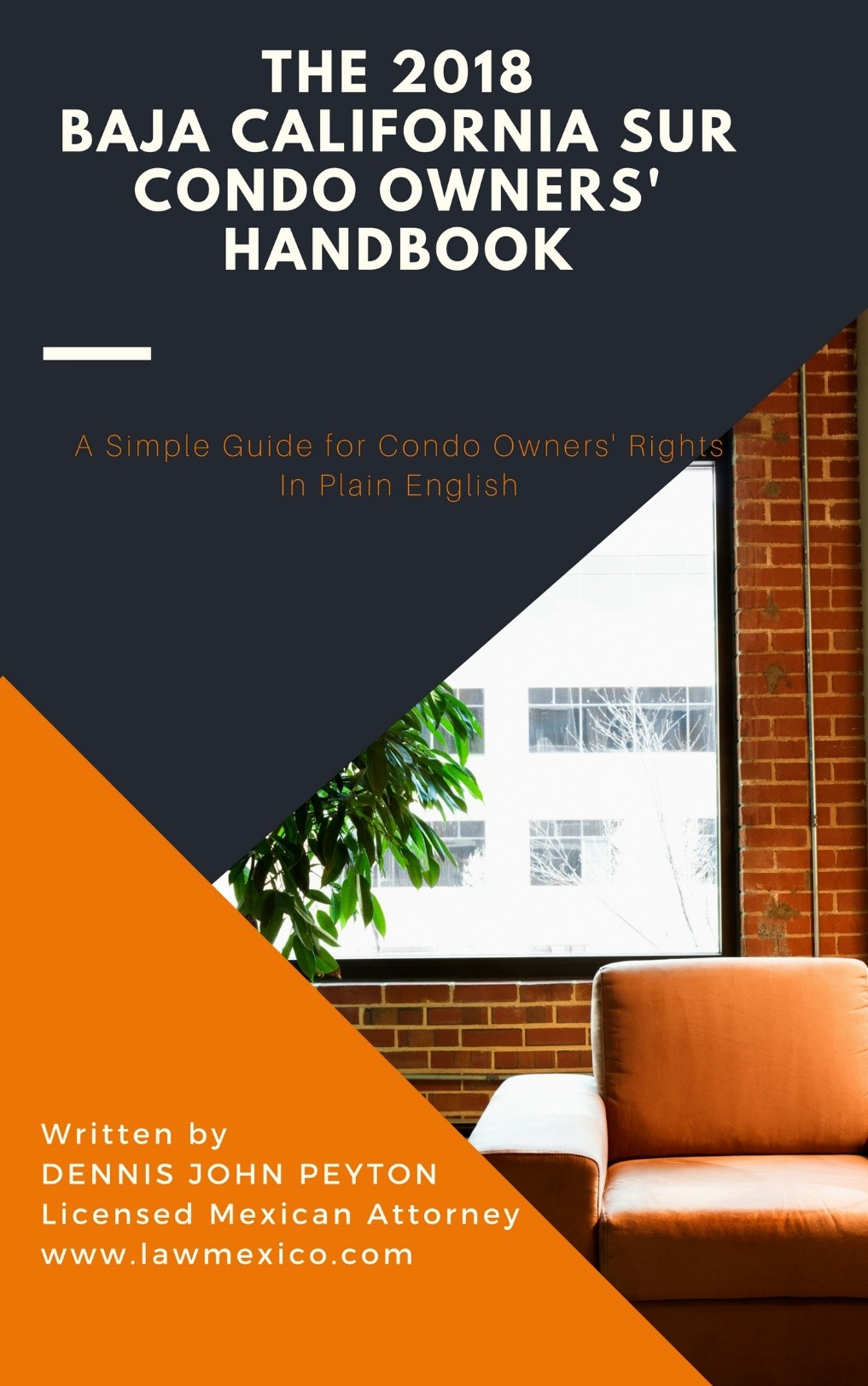 The 2018 Baja California Sur Condo Owners' Handbook